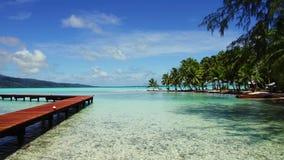 在热带海滩的木码头在法属波利尼西亚 股票录像