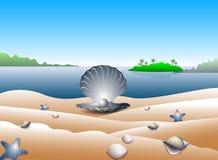 在热带海滩的珍珠   向量例证