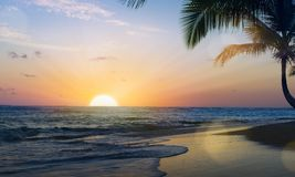 在热带海滩的艺术美好的日落 免版税库存图片
