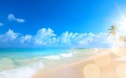 在热带海滩的艺术美好的日落 库存照片