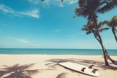 在热带海滩的冲浪板在夏天 库存图片
