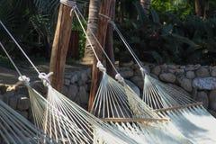 在热带海滩的吊床 库存图片