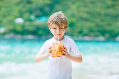 在热带海滩的小孩男孩饮用的椰子汁 图库摄影