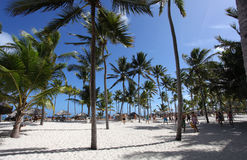 在热带海滩的排球 免版税库存图片