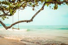 在热带海滩的木摇摆 免版税图库摄影