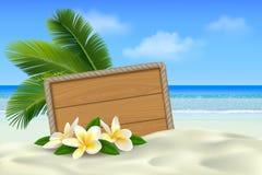 在热带海滩的木牌与白色沙子、羽毛花和棕榈叶 与地方的夏天背景文本的 库存图片