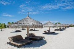在热带海滩的木sunbeds在马尔代夫 免版税库存照片