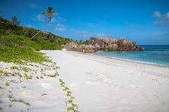 在热带海滩的粉末白色沙子 免版税库存图片