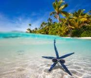 在热带海滩的蓝色海星 免版税库存图片