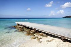在热带海滩的跳船 库存图片