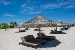 在热带海滩的Sunbeds在马尔代夫 免版税库存图片