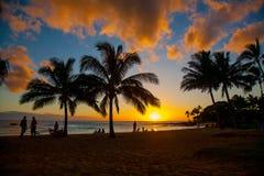 在热带海滩胜地的日落场面 库存照片