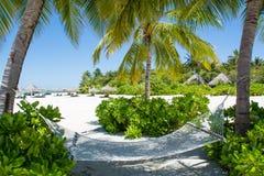 在热带海滩附近的吊床在马尔代夫 图库摄影