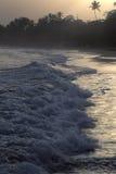 在热带海滩,多巴哥的日出 库存照片