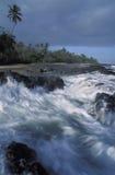 在热带海滩,多巴哥的波浪 免版税图库摄影