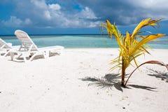 在热带海滩,马尔代夫的Sunbed 图库摄影