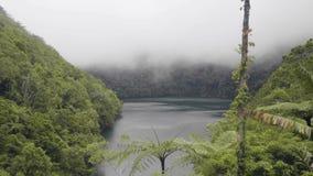 在热带湖和绿色森林自然风景有薄雾的阴霾和山湖的有雾的云彩在绿色高地中 影视素材