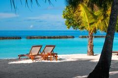 在热带白色沙子海滩的两张海滩睡椅 库存图片
