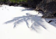 在热带白色沙子海滩的棕榈树阴影 库存照片