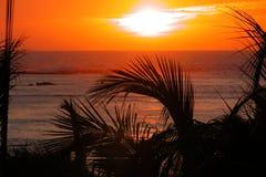 在热带的日落的海洋 库存照片