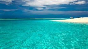 在热带盐水湖的棕榈树有白色海滩的在马尔代夫 股票录像