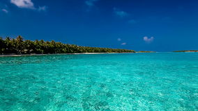 在热带盐水湖的棕榈树有白色海滩的在马尔代夫 股票视频