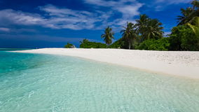 在热带盐水湖的棕榈树有白色海滩的 股票录像