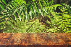 在热带绿色花卉背景前面的木桌 对产品显示和介绍 库存图片