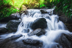 在热带雨林泰国的瀑布 免版税库存照片