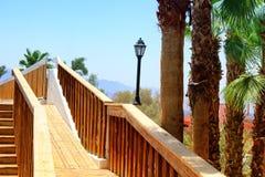 在热带风景的老浪漫木桥 夏天旅行和假期概念 免版税库存照片