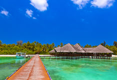 在热带马尔代夫海岛上的咖啡馆 免版税库存图片