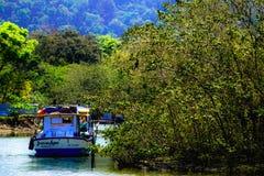 在热带enveironment附近的Fisher小船 免版税库存照片