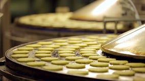 在热的传送带的未加工的土豆薄煎饼 股票视频