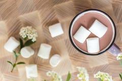 在热的可可粉顶部的蛋白软糖在桃红色杯子 库存照片