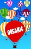 在热空气气球写的有机有蓝天背景 免版税库存照片