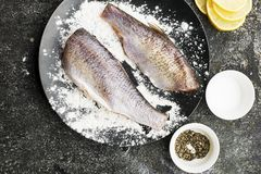 在烹调的新鲜的被毁坏的裁减河鱼与盐,胡椒,在灰色难看的东西背景的柠檬切片前 顶视图 库存图片