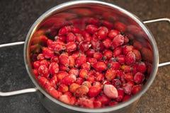 在烹调罐的冷冻野玫瑰果 免版税图库摄影