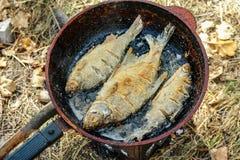 在煎锅油煎的河鱼 免版税库存照片