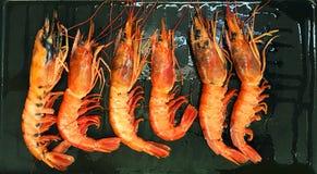 在煎锅的六只大海螯虾 免版税图库摄影