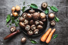 在煎锅的皇家蘑菇 煮熟的盘 库存图片