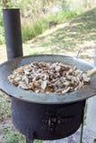在煎锅的蘑菇 图库摄影