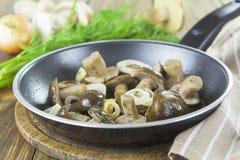 在煎锅的蘑菇 免版税库存照片
