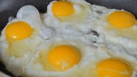 在煎锅的Scrumbled鸡蛋 股票视频