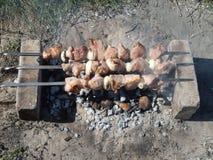 在煤炭的烤肉串 库存照片