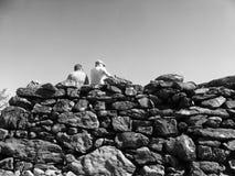 在熊山的金字塔形石塔 免版税图库摄影