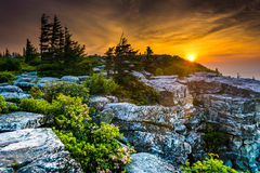 在熊岩石蜜饯的日出,在移动式摄影车铺草皮原野, Monon 免版税图库摄影