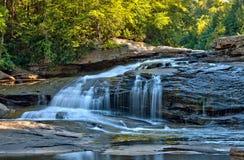 在燕子的秋天颜色在燕子小河国家公园,马里兰下跌 免版税库存照片