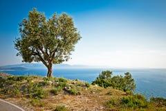 在爱奥尼亚海,阿尔巴尼亚的美好的全景 免版税库存图片