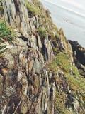 在爱尔兰海滩的微型岩层 免版税库存图片