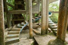 在爱德华詹姆斯庭院Xilitla墨西哥的混凝土结构 库存图片